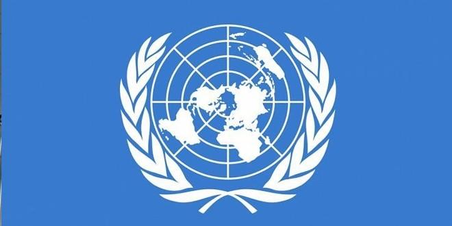 BM'de Finlandiya-Türkiye iş birliği Yunanistan'ı rahatsız etti