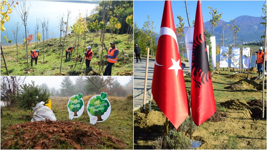 KKTC, Azerbaycan, Bosna Hersek ve Arnavutluk'ta binlerce fidan toprakla buluştu