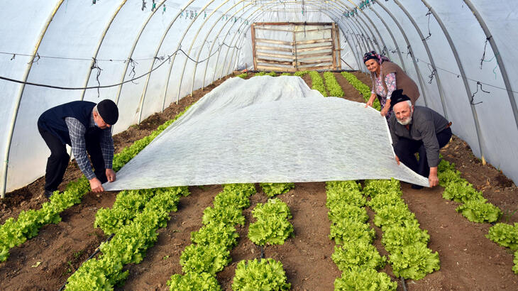 Edirneli sebze üreticileri seralarda dona karşı önlem alıyor
