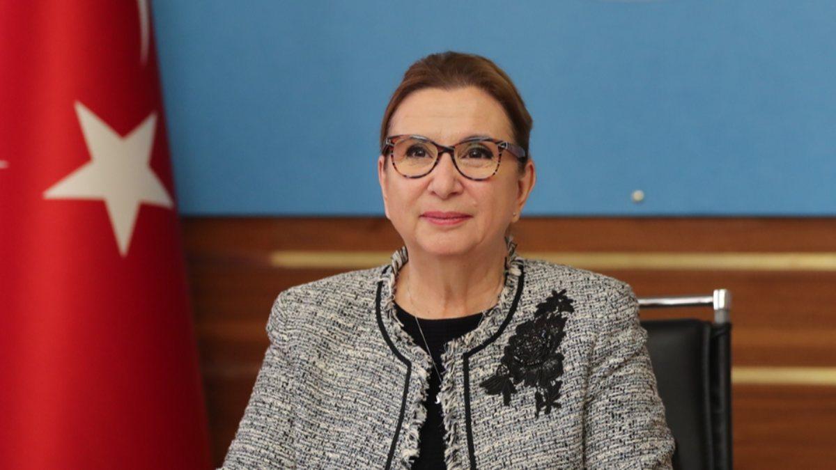 Ruhsar Pekcan: Türkiye, yeni fırsatları en iyi şekilde değerlendirme potansiyelinde