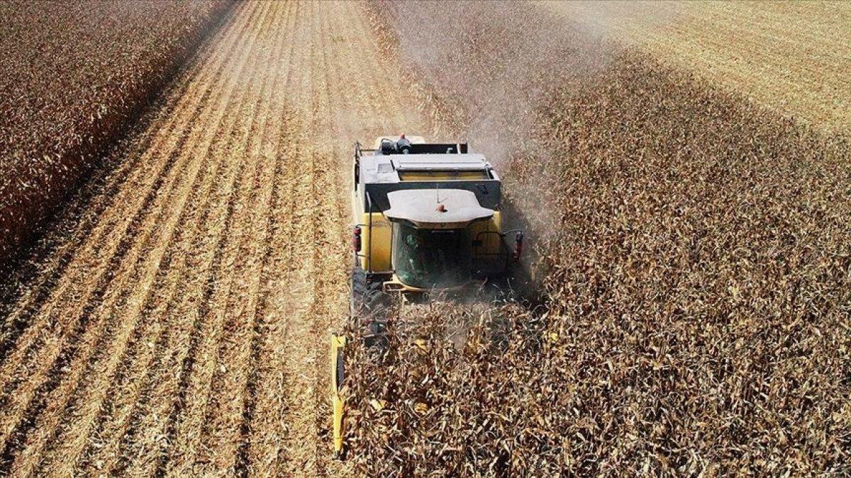 TİM: 2020 ihracat hedefimize ulaşmamızda tarım sektörü kilit rol oynadı