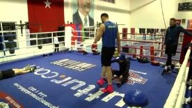 Türkiye ve Azerbaycan boks milli takımlarının kampına Romanya da katıldı